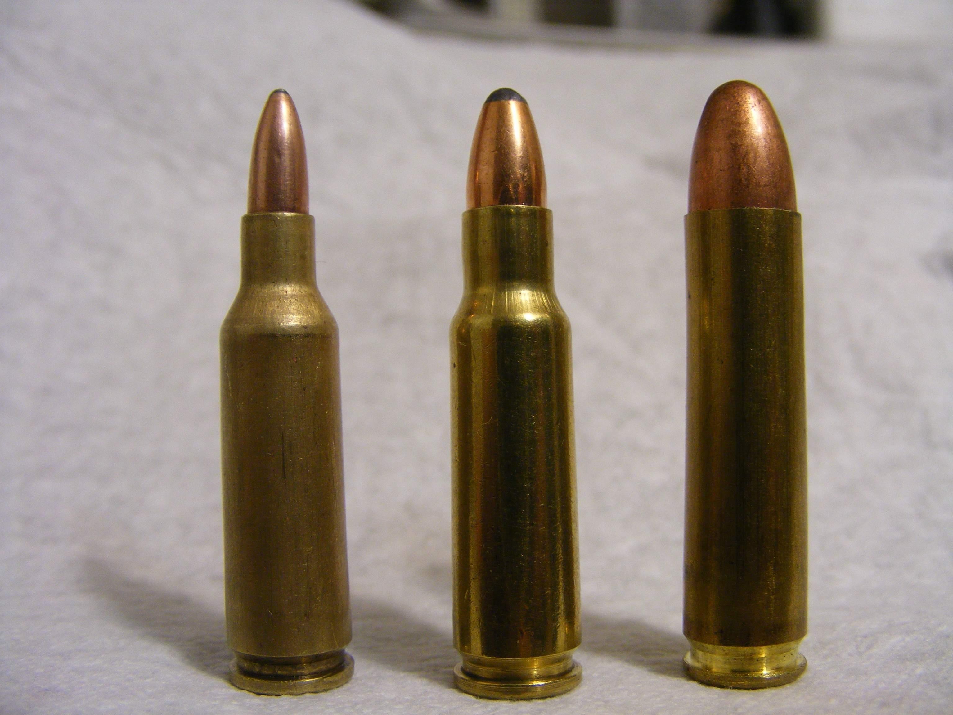 Wildcat Bullets