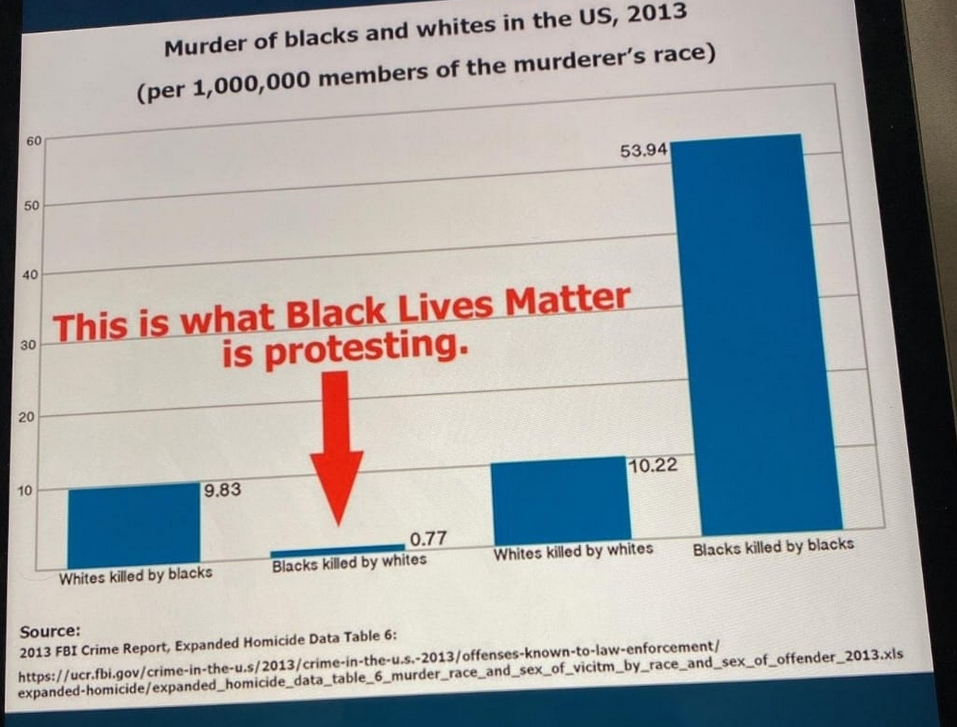 BLM is Protesting This.png