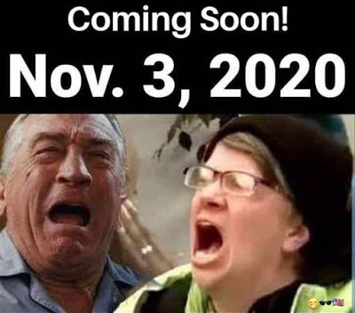 coming-soon-november-3rd-2020-dineiro-liberal-screaming.jpg