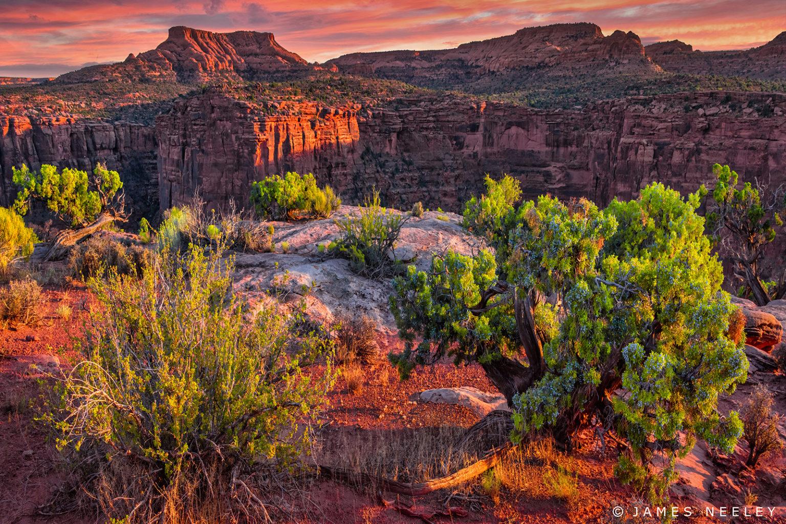 Kane Creek Canyon at sunset Utah.jpg