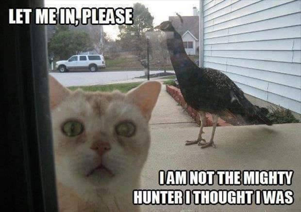 Mighty Hunter.jpg