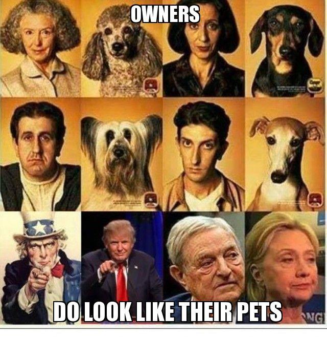 owners-look-like-their-pets-pet-politics-1476269400.jpg