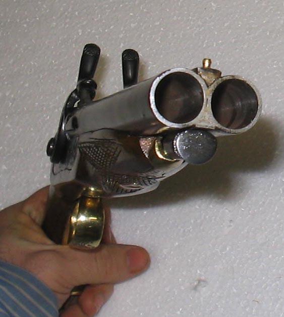 Stoeger Coach Gun for home defense??? | Gun and Game - The