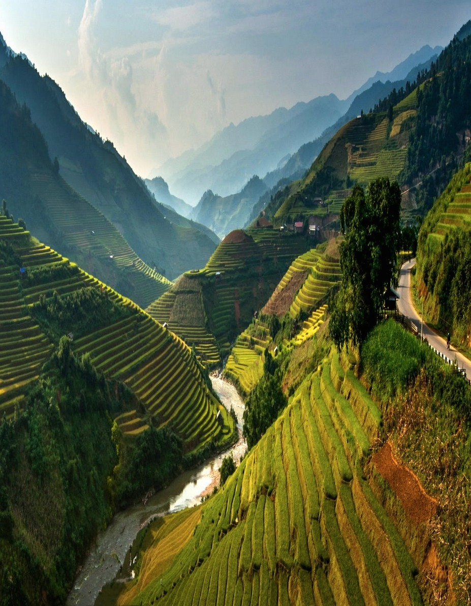 Rice Terrace Fields in Mu-Cang-Chai Vietnam.jpg