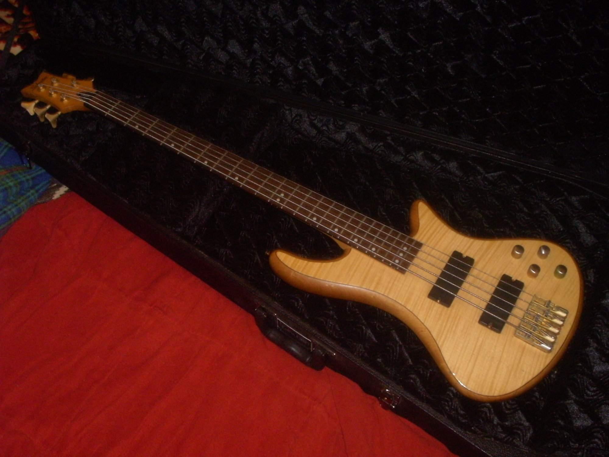 Schecter Custom 5 (9).JPG