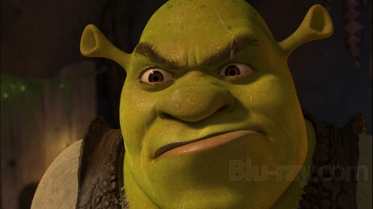 Shrek Angry.jpg