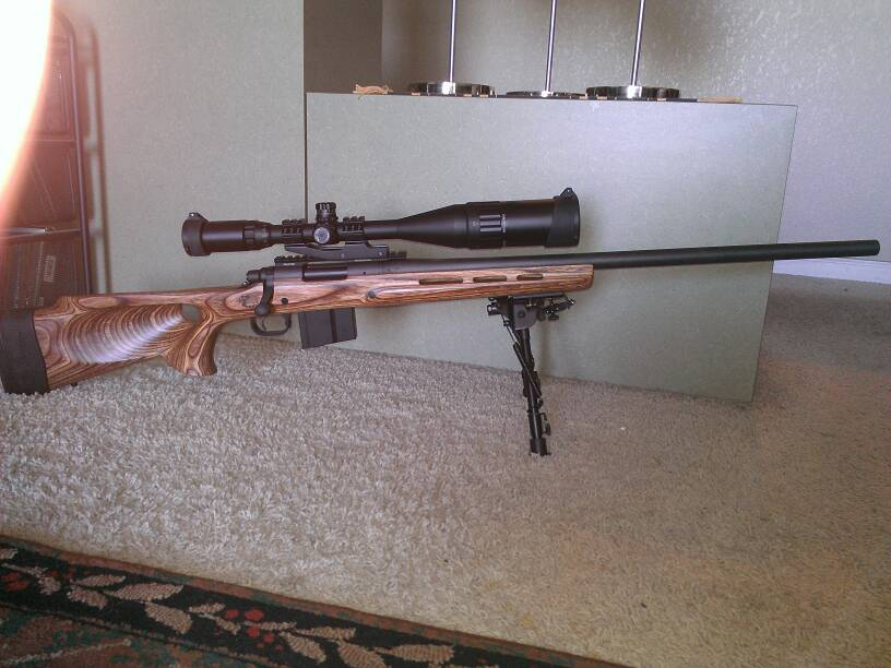 Will this stock work  | Gun and Game - The Friendliest Gun